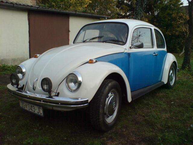 Day when beetle was bought