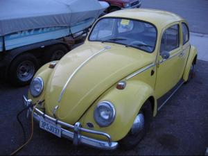 The Electric Bug